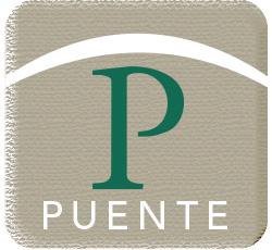 Puente program