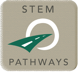 STEM pathways