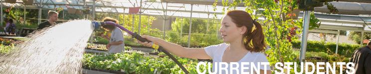 Diablo Valley College Greenhouse