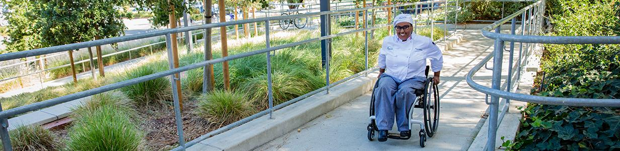 Disability Services on Campus