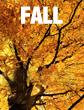 fall schedule 2015