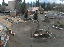 commons construction-above- 11-10-14