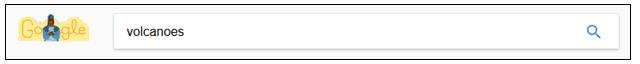 Google search field