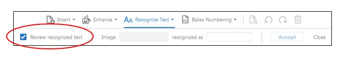 Review recognized text check box